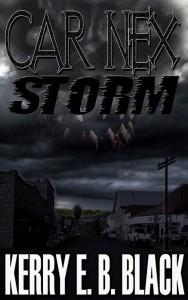 carnexstorm copy